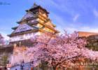 Bảo hiểm du lịch Nhật Bản